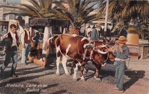 Portugal Madeira Carro de boi, Bullock car