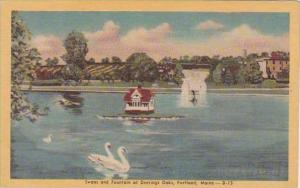 Maine Portland Swans And Fountain At Deerings Oaks