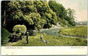 1907 WOLFVILLE, Nova Scotia Canada Postcard CORNWALLIS RIVER Ox Wagon Farmer