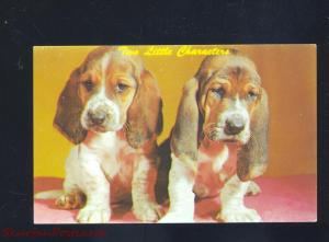 TWO LITTLE CHARACTERS BASSET HOUND PUPS PUPPIES DOG DOGS