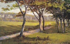 SALTCOATS , England, 1904 ; Holm Plantation ; TUCK