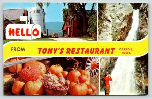 Carroll~Rural Iowa Greetings~Tony's Restaurant~Silo~Pumpkins & Falls~1950s