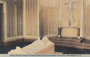 WASHINGTON DC, 1930-40s; Bishop Shahan Chapel, National Shrine of the Immacul...