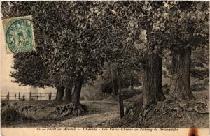 CPA CHAVILLE Les Vieux Chénes de l'Etang de Brisemiche (413474)