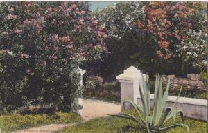 A gateway,  Bermuda,  00-10s