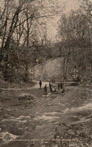MINNEAPOLIS, Minnesota, 1912 ; Minnehaha Creek, Rustic Bridge