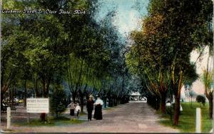 St Clair Flats MI~White Star Line Steamer Landing~Horses No-No~Tashmoo Park~1910