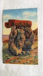 The Arm Chair Petrified Forest, Arizona Scenic Postcard