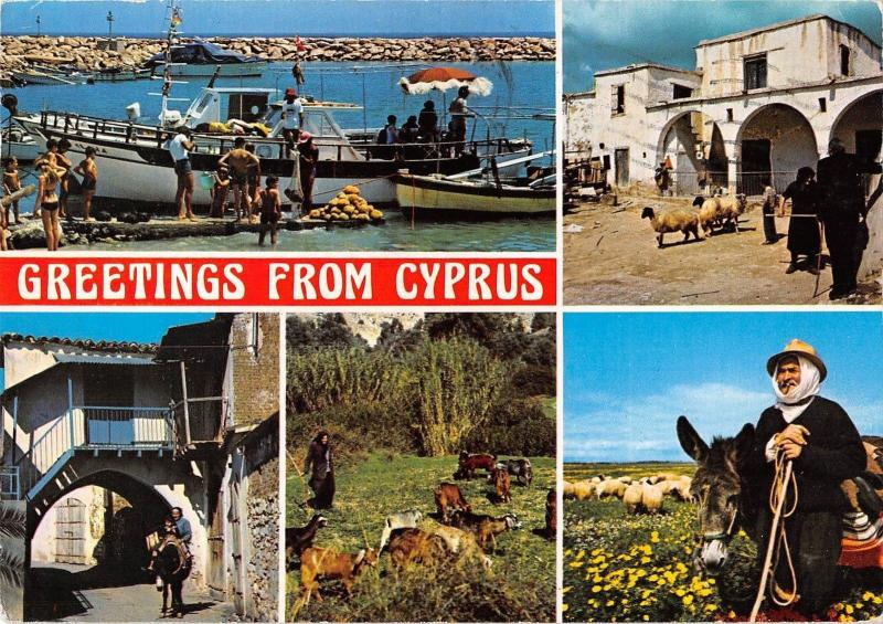 B96542 greetings from cyprus ship bateaux donkey sheep