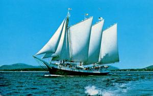 Three Masted Cruise Schooner Victory Chimes (Sailing)