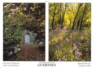 Guernsey Postcard Channel Islands Multi View by D.R Photography Ltd P8