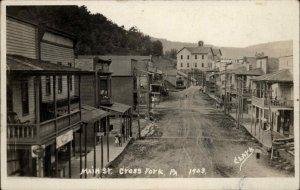 Cross Fork Potter County PA Main St. c1910 Clark Real Photo Postcard
