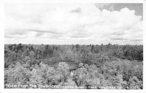 Waycross Georgia View From Tower Okefenokee Real Photo Antique Postcard K11133