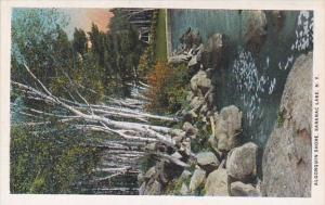 New York Saranac Lake Algonquin Shore