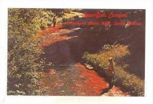 Woman flyfishing, Spearfish Canyon, Northern Black Hills, South Dakota, 40-60s