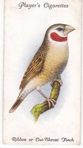 Cigarette Cards Playe Aviary and Cage Birds No 42 Ribbon or Cut-Throat Finch