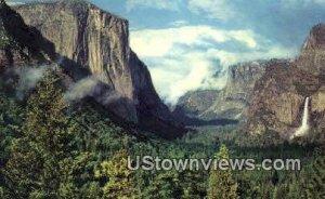 Wawona Road - Yosemite National Park, CA