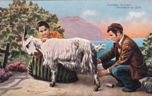 Italy Costumi Siciliano Venditore di Latte Goat Milking