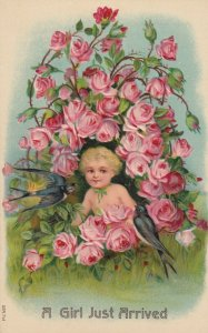 BIRTHDAY , 1900-10s ; A Girl Just arrived , Pink Roses