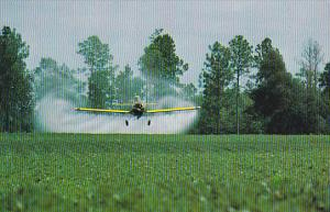 Georgia Airplane Crop Dusting A Peanut Field