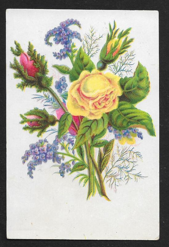 VICTORIAN TRADE CARDS (5) Stock Cards Flowers with Stems & Leaves