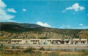 Cook Green Tree New Mexico Valley View Motel roadside Postcard 20-10225