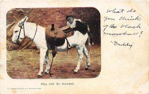 F53/ Black Americana Postcard 1907 Call me Snowball Mule Boy 2