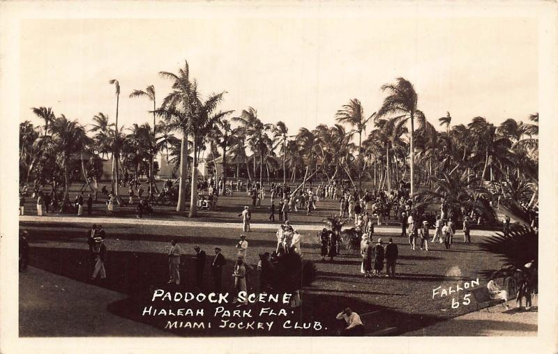 Florida Paddock Scene Hialean Park Miami Jockey Club real photo Postcard