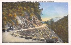ROADWAY SCENE~IN THE HEART OF THE  BLUE RIDGE MOUNTAINS NORTH CAROLINA POSTCARD