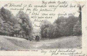 Belgium Postcard - Bruxelles - Bois De La Cambre - Le Ravin - Ref TZ1685