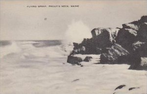 Maine Prouts Neck Flying Spray Artvue