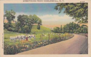 New York Greetings From Cobleskill Curteich