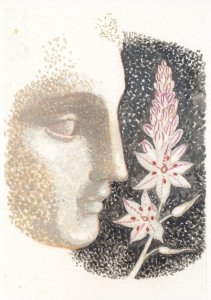 Lizzie Riches Epping Forest Greek Asphodel Flowers Painting Postcard