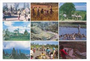 9-view postcard , Bali , Indonesia, 50-70s