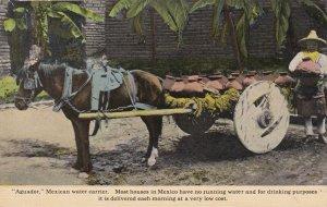 Mexico Aguador Mexican Water Carrier Curteich sk3324
