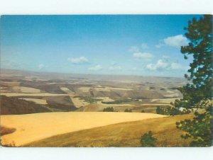 Pre-1980 RIVER SCENE Lewiston Idaho ID AE5941