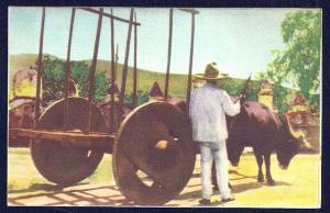 Typical Oxcart Mexico unused c1930's