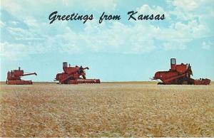 Ellis County Wheat Harvest Greetings from Kansas KS