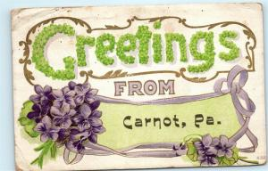 Greetings from Carnot PA Carnot Moon Coraopolis Vintage Postcard D91