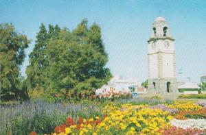 Seymour Square Blenheim New Zealand Postcard