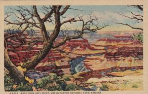 Arizona Grand Canyon Looking West From Hopi Point Fred Harvey