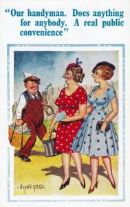 Plumber DIY Handyman Does Anything For Ladies Comic Humour Postcard