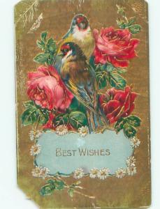 Divided-Back BIRDS SCENE Pretty Postcard AA9173