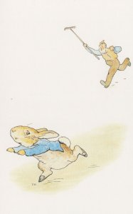The Tale Of Peter Rabbit Chased By Mr McGregor 1902 Book Postcard