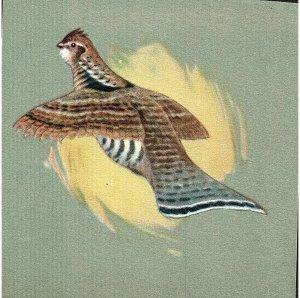 Vintage Prints Lot of 3 Pheasants ~Scrap~ Hand Cut