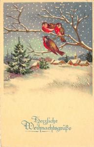 BG14597 weihnachten christmas bird on tree  germany