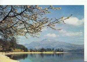 Scotland Postcard - Loch Lomond and Ben Lomond from Luss - Dunbartonshire TZ8727