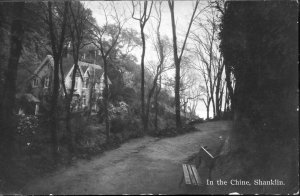 Milton 'Real Photographic' Postcard 'In the Chine, Shanklin'