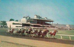 TIJUANA , B.C. , Mexico , 1954 ; Caliente Horse Race Track