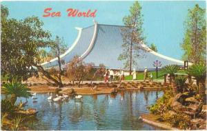 Sea World's Chicken of the Sea Theater, San Diego?, California, CA, 1967 Chrome